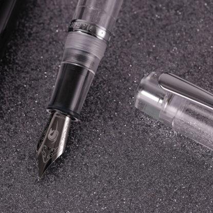 Narwhal Demonstrator Fountain Pen