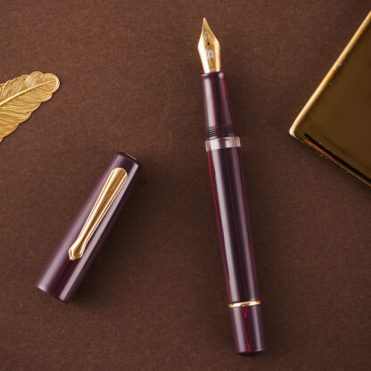 Narwhal 365 Limited Edition Fountain Pen (Ebonite)